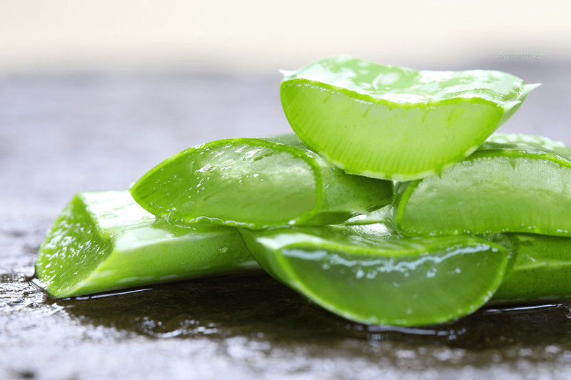 Aloe Vera, One of the Best Treatments for Sunburn to Prevent Peeling