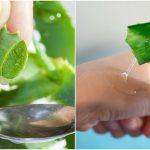 using aloe vera for the skin